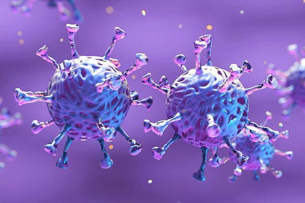 بیماری کرونا در زنجان فرایند افزایشی دارد