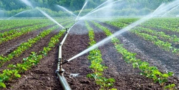 دانش بنیان ها زیرساخت های علمی پایش آب و خاک را در راستای یاری به گسترش کشاورزی توسعه دادند